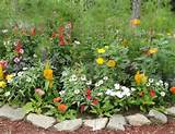 rustic garden ideas - Google Search | gardens | Pinterest