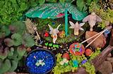 miniature and fairy gardens from the great annual miniature garden