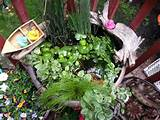 goldfish pond fairy garden and other cute gardening ideas pinter