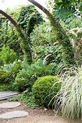 small / urban garden ideas | Garden that I love | Pinterest
