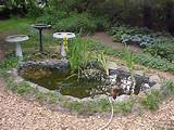 Small Pond Ideas Will Make Your Yard More Beautiful : Small Patio Pond ...