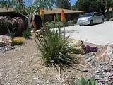 Photo Gallery | High Desert landscaping,Phelan CA