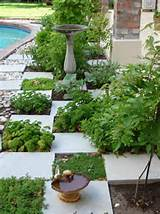 beautiful herb garden idea: incorporate herbs... | Wallace Gardens