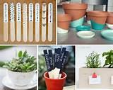 wooden garden markers dipped pots teacup succulent chalkboard garden