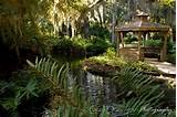 washington oaks state gardens gazebo beautiful places pinterest