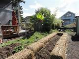 raised planter ideas school garden pinterest