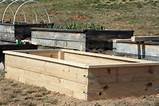 gardening fun vegetable garden raised garden garden boxes gardening