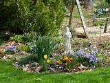 spring blooms gardening ideas pinterest