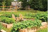 Small Garden Ideas: Square Foot Gardening - Farm and Garden - GRIT ...