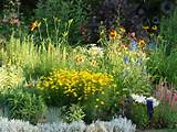 small perennial garden ideas cottage garden landscaping ideas gt ...