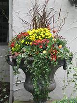 Beautiful autumn planter ideas for the home garden. Other seasons are ...