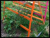Tomato Trellis Ideas #2 and #3 – Cattle Panels and String Trellises
