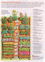 ... Vegetable Garden Fences, Vegetable Garden Layouts and Small Vegetable