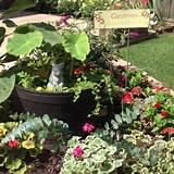 backyard corner gardening ideas pinterest
