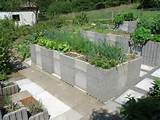 Cinder Blocks Used for Raised Beds