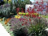 ... california giveaway landscape circumference ideas Landscaping Ideas