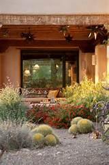 Xeriscape Garden In BloomBoxhill Landscape DesignTucson, AZ