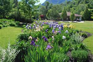 this garden is an alpine garden filled with plants that one might find ...