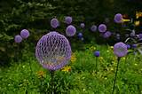 cool idea crafts lawn ornaments allium flowers gardening garden