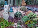 offers ideas for great succulent garden design monji enterprises
