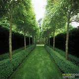 path gardens ideas gardens walkways gardens inspiration fudge gardens ...