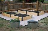 raised garden boxes garden ideas pinterest