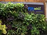 vertical container gardens vertical garden ideas vertical gardens