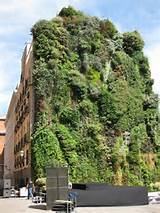 Vertical Gardening Grows Up in Small Spaces - Green Living Ideas