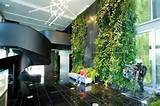 Contemporary Vertical Garden Ideas | Home
