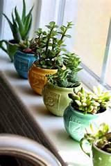 diy home garden ideas 1
