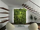 indoor garden ideas vertical garden contemporary living room design ...