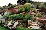 ... back yard plans | Pinterest | Drought Resistant Landscaping