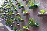 Vertical Gardening Ideas | Vertical Gardens | Pinterest