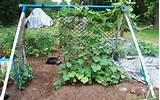 vegetable garden trellis ideas inexpensive what are some cheap ideas