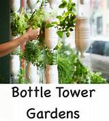 herb garden idea for indoors garden ideas pinterest