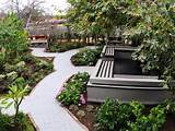 backyard garden with geometric lines hgtv
