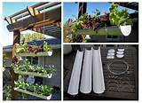 Why Bother with a Gutter Garden?