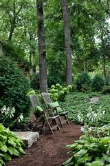 Shade garden | Awesome garden ideas | Pinterest
