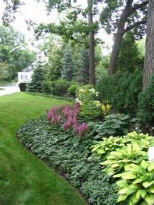 low maintenance plants - The background is Spruce and Arborvitae. The ...