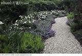 Gravel garden path | Landscape Design Ideas | Pinterest