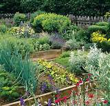 ideas for vegetable garden layout gardening outdoors pinterest