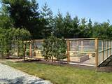 deer fence-share your solutions please. (landscape, 2013) - Garden ...