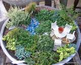 ... miniature gardens this is just one of their beautiful ideas these are