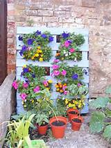 Brilliant Pallet Garden Projects | Pallets Designs