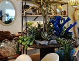 modern artistic succulent arrangement