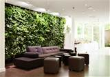 indoor-garden-in-wall-design-ideas - FelmiAtika.com