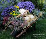 ... soil and use it as a large planter or a container for garden goodies