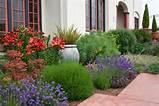 jardin méditerranéen avec plantes aromatiques et fleurs en rouge et ...