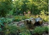 Backyard Habitat: Making Dollars and Sense In Your Yard - National ...