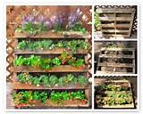 Easy steps to making your own pallet planter | The Micro Gardener www ...